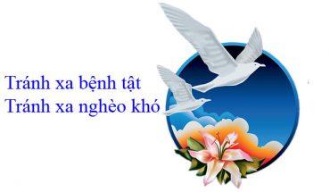 Slogan của New Image