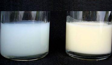 So sánh sữa non alpha lipid với sữa thông thường