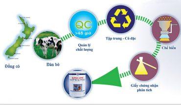 Quy trình sản xuất sữa non alpha lipid