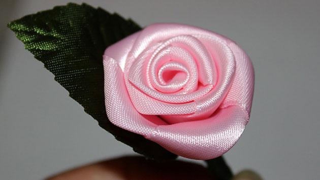 Hoa hồng vu lan